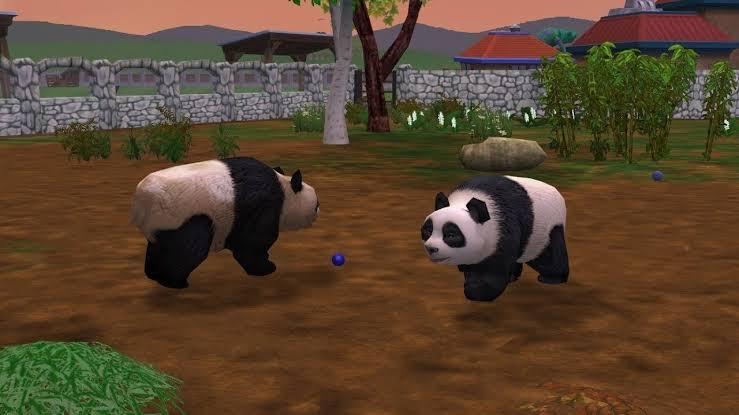 O panda é um dos animais em extinção mais raros e cobiçados no jogo, exigindo um zoológico avaliado em 5 estrelas para finalmente poder ser adotado.